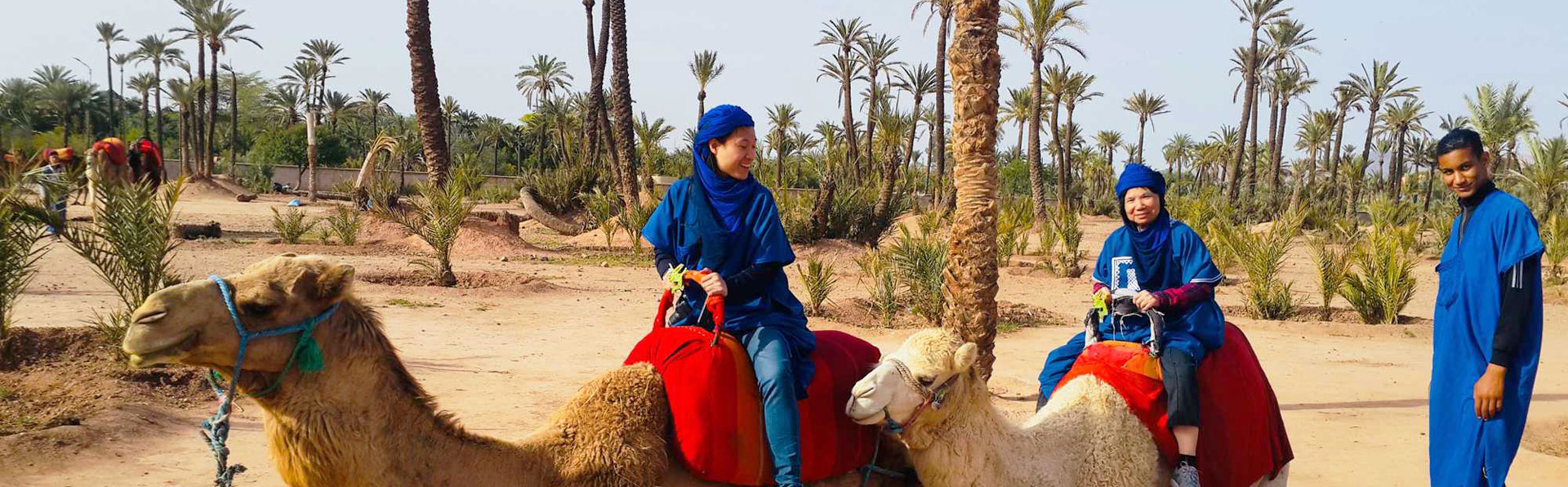 Camel Ride Marrakech in the Palm Grove - Camel Riding from